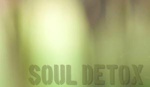 soul detox army green no tag