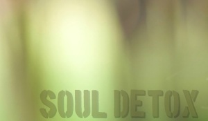 soul detox army green no tag